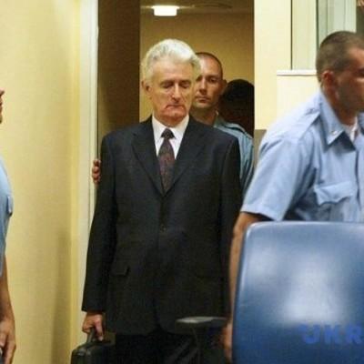 Защита Караджича попробует добиться пересмотра дела