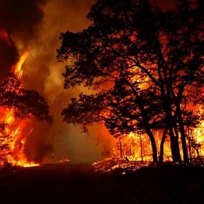На Корсике горит две тысячи гектаров леса