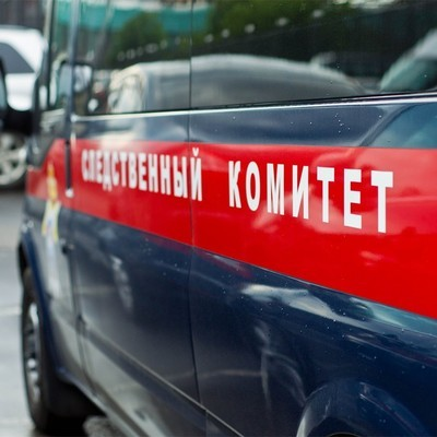 СК проверяет данные о жестоком обращении в детском саду под Томском