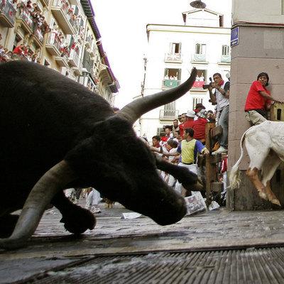 В Испании во время фестиваля быки напали на двух человек
