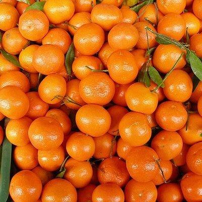 Детям КНДР раздадут мандарины из Сеула