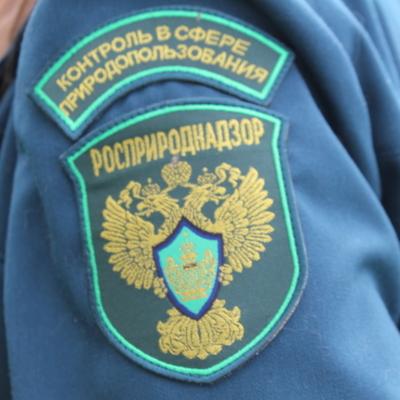 Росприроднадзор попросит правительство разрешить проверить все дамбы в России
