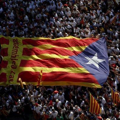Число пострадавших во время акций протеста в Каталонии возросло до 46 человек
