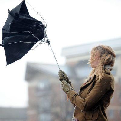 Режим ЧС введен в Новороссийске из-за ураганного ветра
