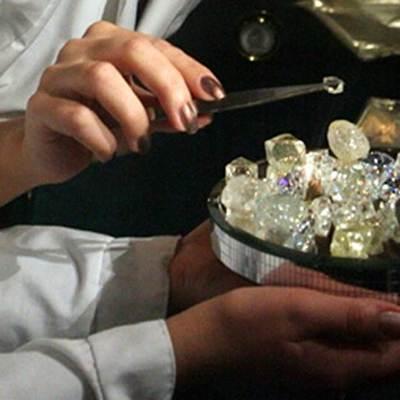 Модель подготовки кадров для алмазной отрасли Дальнего Востока разработало АРЧК ДВ