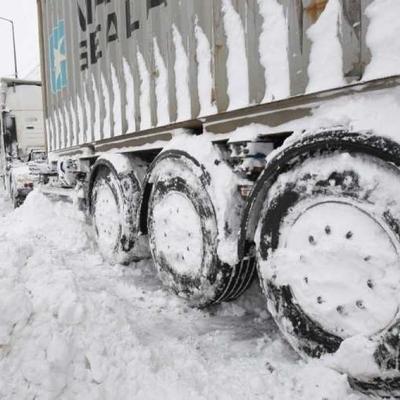 Северная столица избежала транспортного коллапса из-за снегопада
