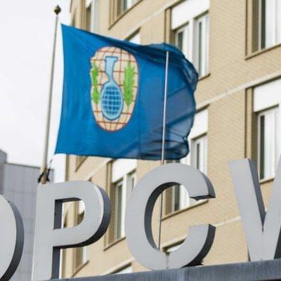 ОЗХО не проголосовала по российско-иранскому проекту решения расследования инцидента в Думе
