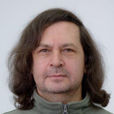 Гордей Борисович Лесовик