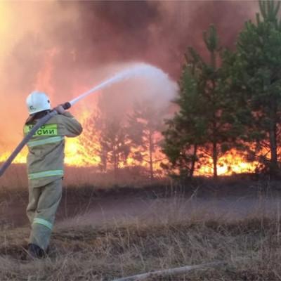 Крупный пожар в Самарской области локализован