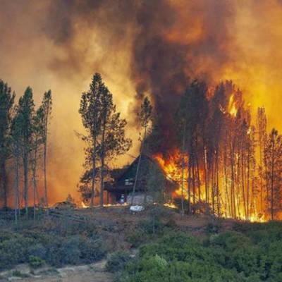 Более 800гектаров леса горит в Иркутской области