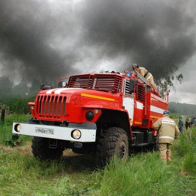 Тайга снова горит в Красноярском крае