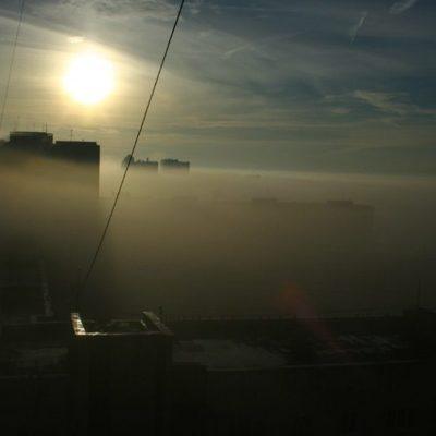 Дым от лесных пожаров Сибири накроет север Гренландии