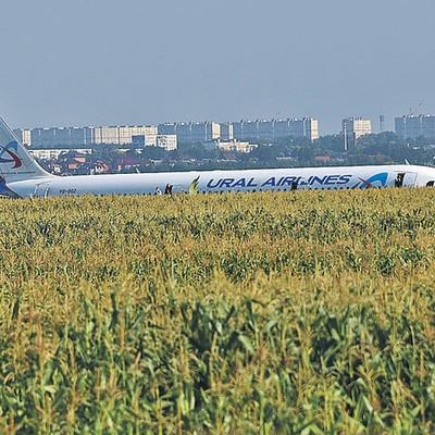 Решение о транспортировке самолета А321 будет принято 19 августа