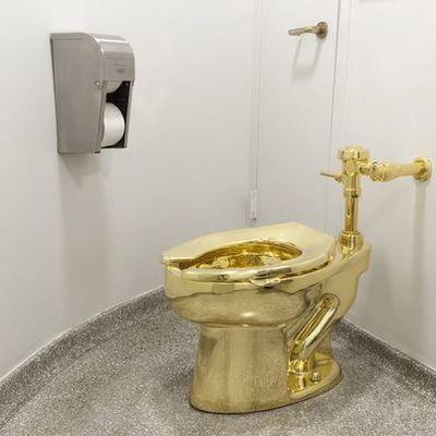Из дворца в Оксфордшире похищен золотой унитаз стоимостью 6 млн долларом