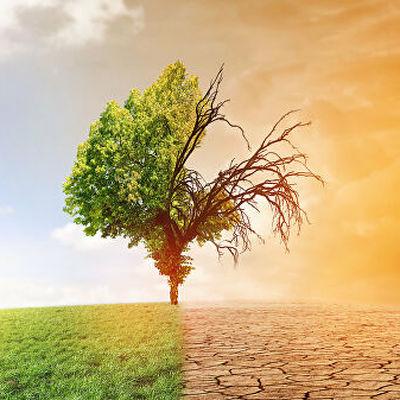 Концентрация парниковых газов в атмосфере достигла рекордных уровней