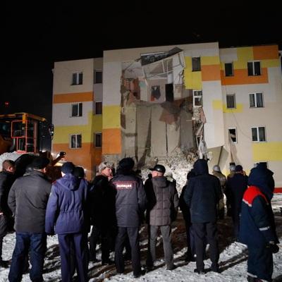 Выживших кота и канареек нашли при разборе завалов обрушившегося дома под Белгородом