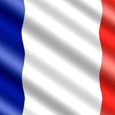 Франция призывает Германию не закрывать границы в районе департамента Мозель