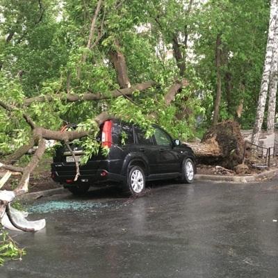 Ураганный ветер оставил без электричества более 100 тысяч жителей Свердловской области