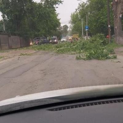 Екатеринбург: работа общественного транспорта восстановлена после урагана