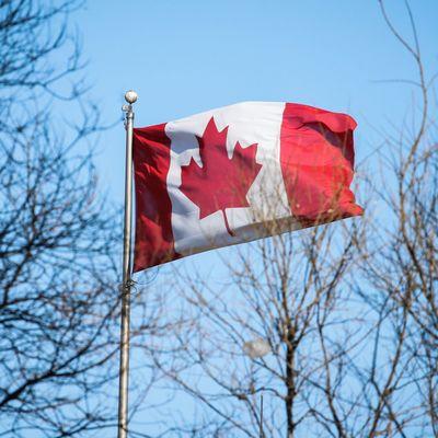 В Канаде реку Мэгпай официально признали личностью