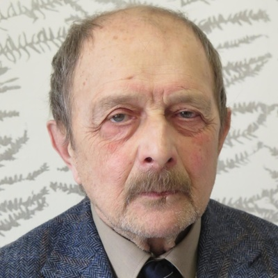 Константин Желдин