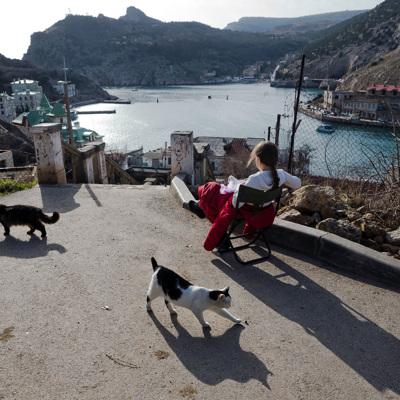 Крымский сенатор прокомментировал рост цен на отдых в регионе