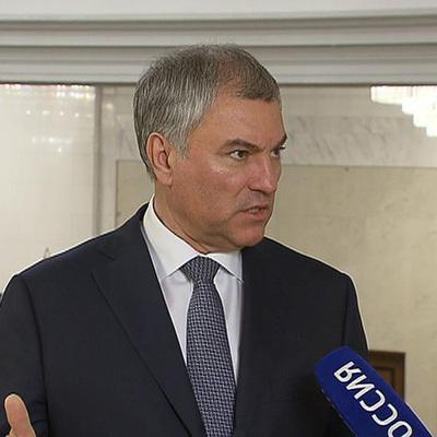 Володин поручил проанализировать законодательство в области оборота оружия