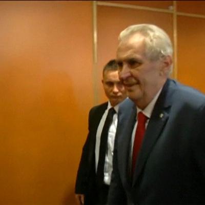 Президента Чехии могут временно лишить полномочий