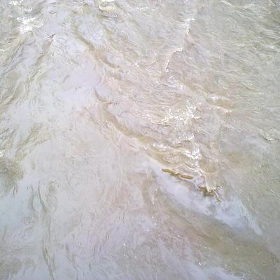 Экипаж теплохода спас пассажирское судно, которое неслось на камни