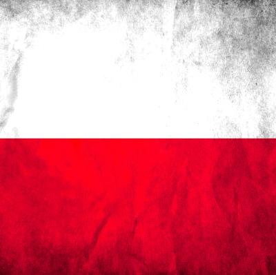 Порядка 17 тысяч человек приняли участие в акции протеста против судебной реформы в Варшаве