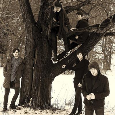 группа Cherry Heavens