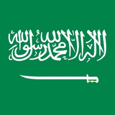В Саудовской Аравии женщинам разрешат управлять грузовыми автомобилями и мотоциклами