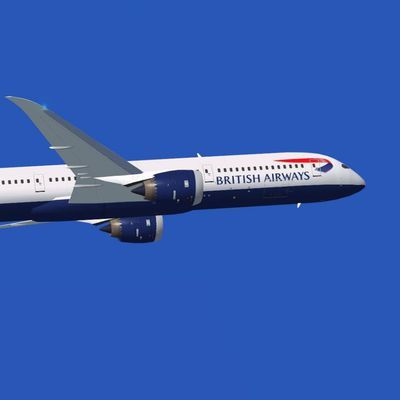 Стюардесса потребовала у British Airways компенсацию из-за боязни полетов