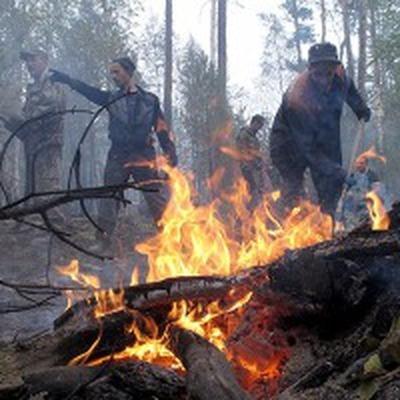 Использовано уже более 400 тонн воды при тушении возгорания на бывшем полигоне в Удмуртии