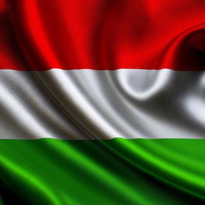 В Венгрии вступил в силу закон, запрещающий бездомным спать на улицах