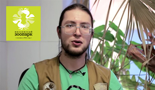 Александр Гатилов, сотрудник Московского зоопарка