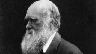 """Чарльз Дарвин. 1868 год."""