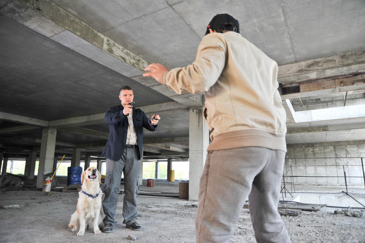 Сериал собачья работа россия смотреть онлайн бесплатно в 1 биткоин рублей