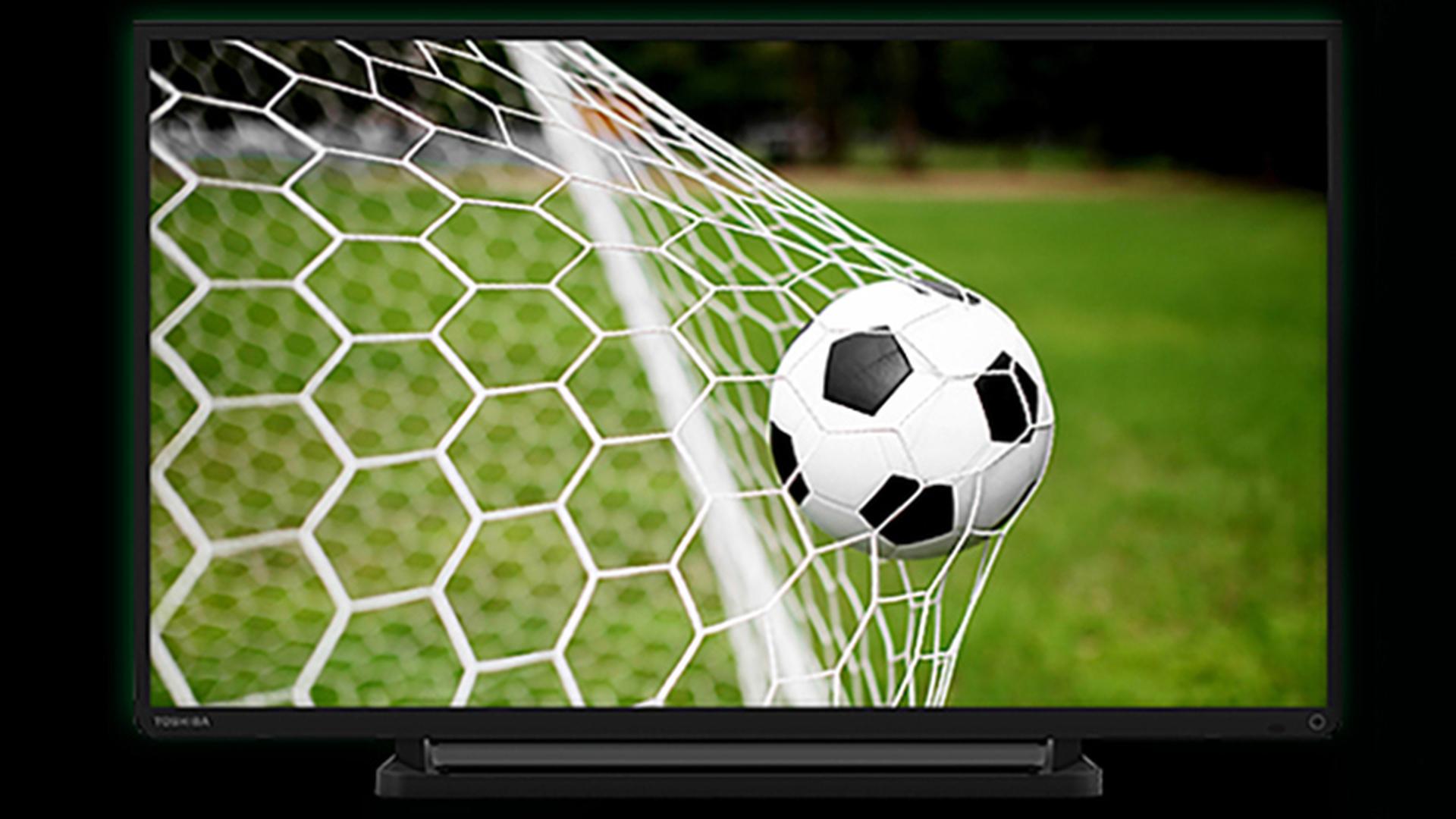 Сборная Бельгии может разорить компанию по продаже телевизоров