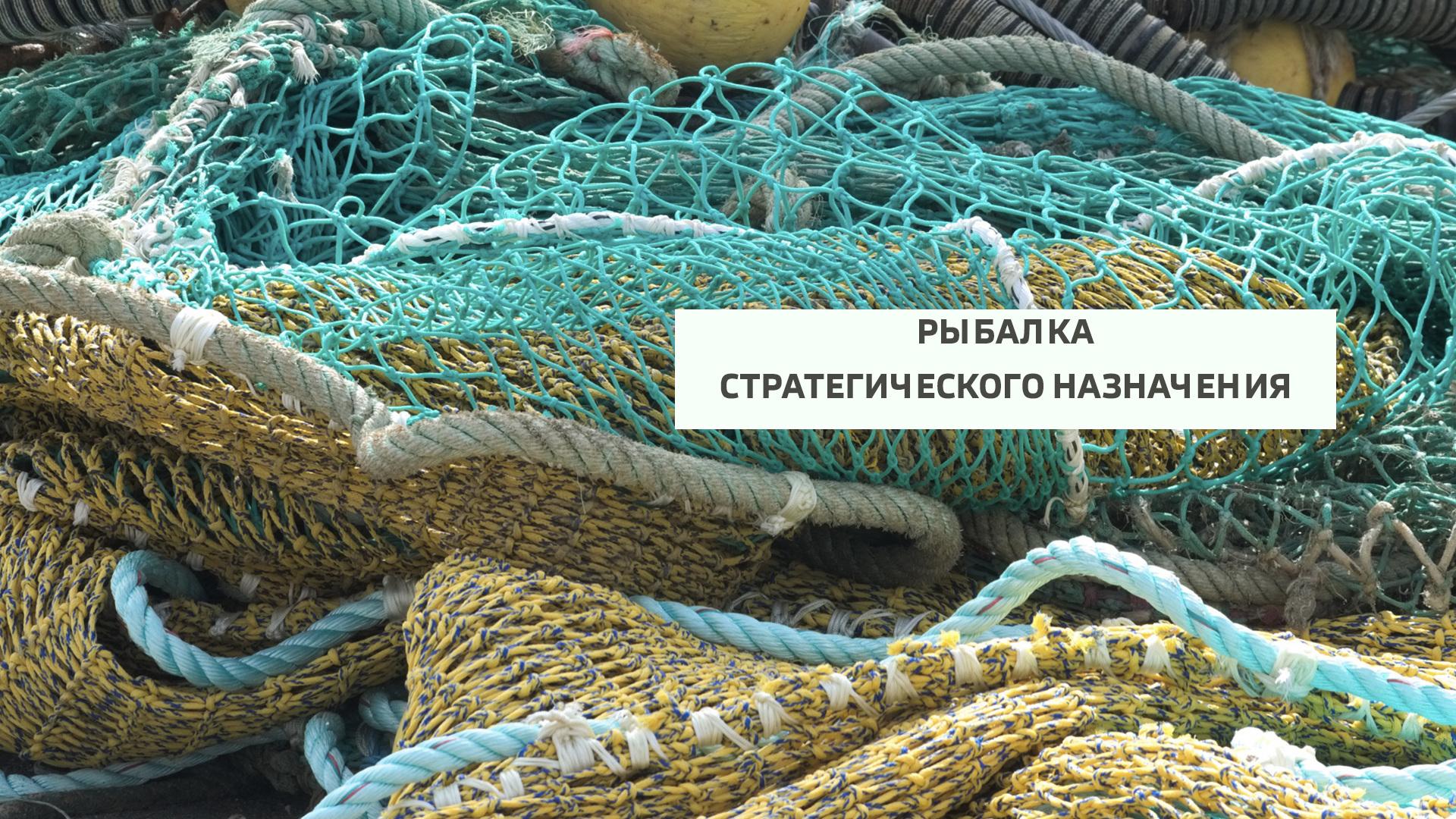 Рыбалка стратегического назначения