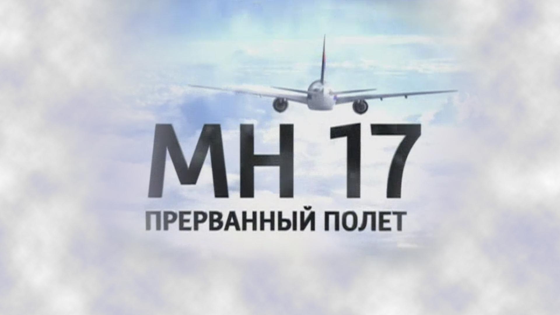 Рейс MH-17. Прерванный полет