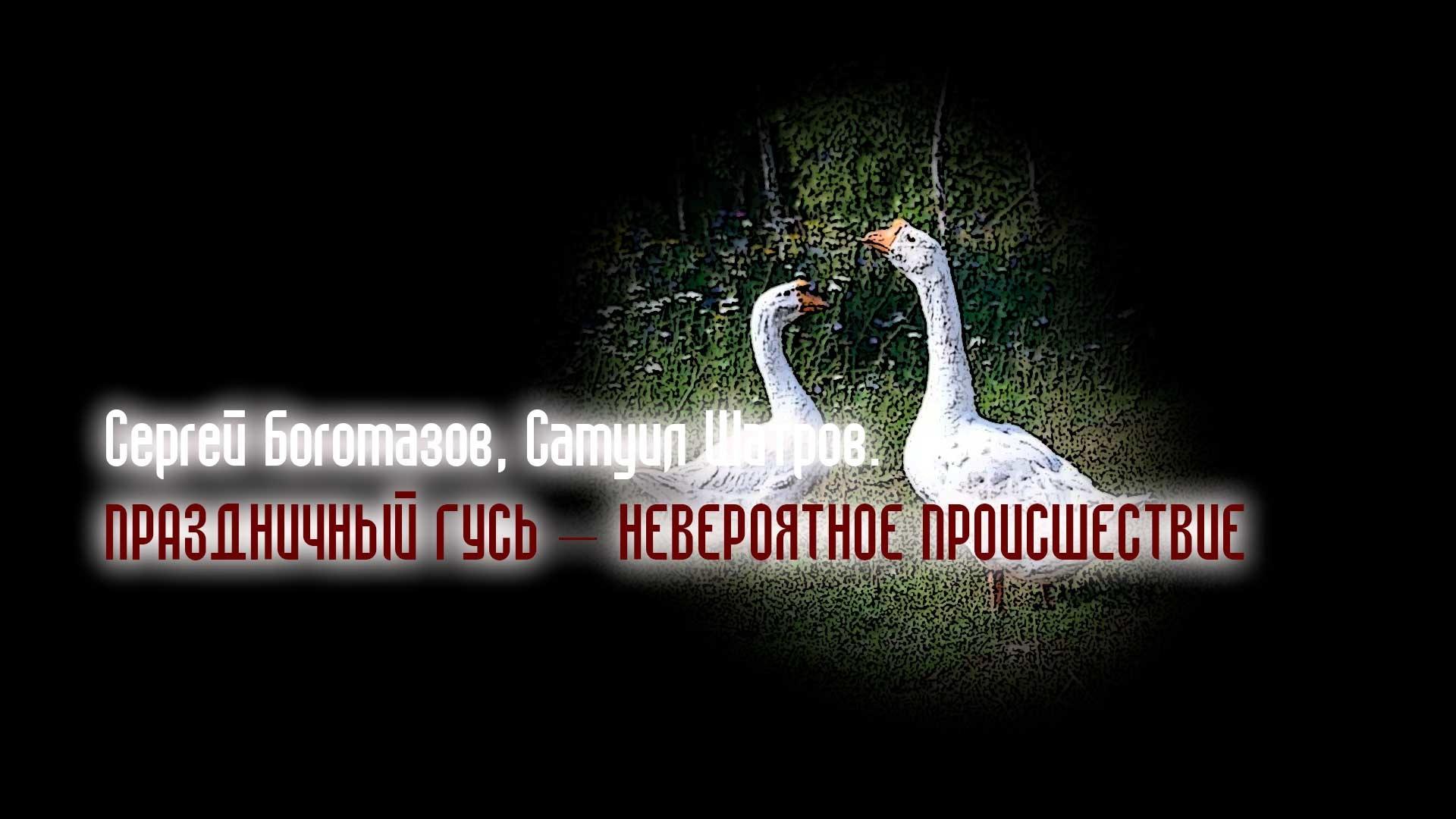 Сергей Богомазов, Самуил Шатров. Праздничный гусь – невероятное происшествие