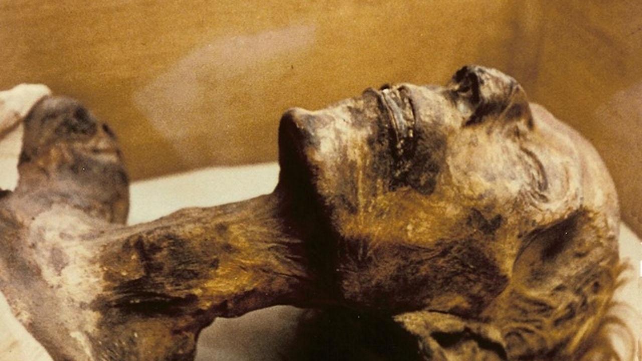 Новая методика изучения ДНК помогла исследовать египетские мумии