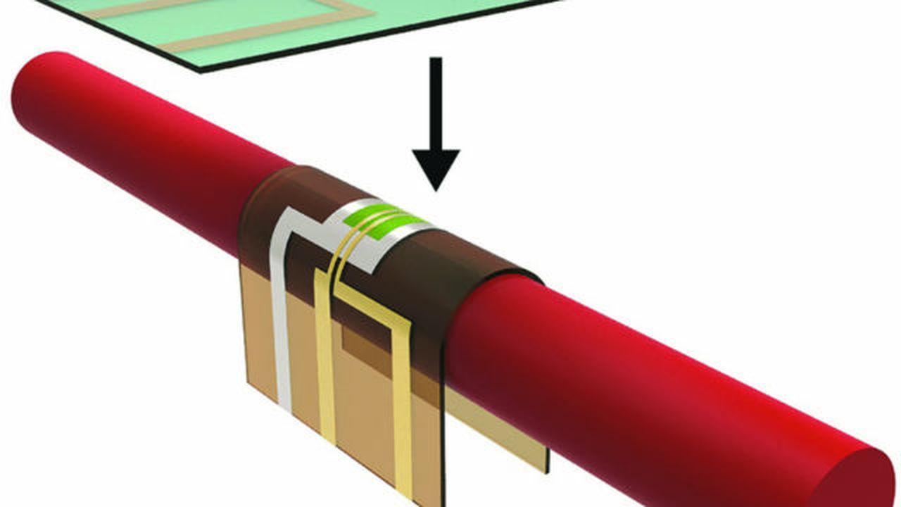 Новая гибкая электроника становится мягкой внутри тела