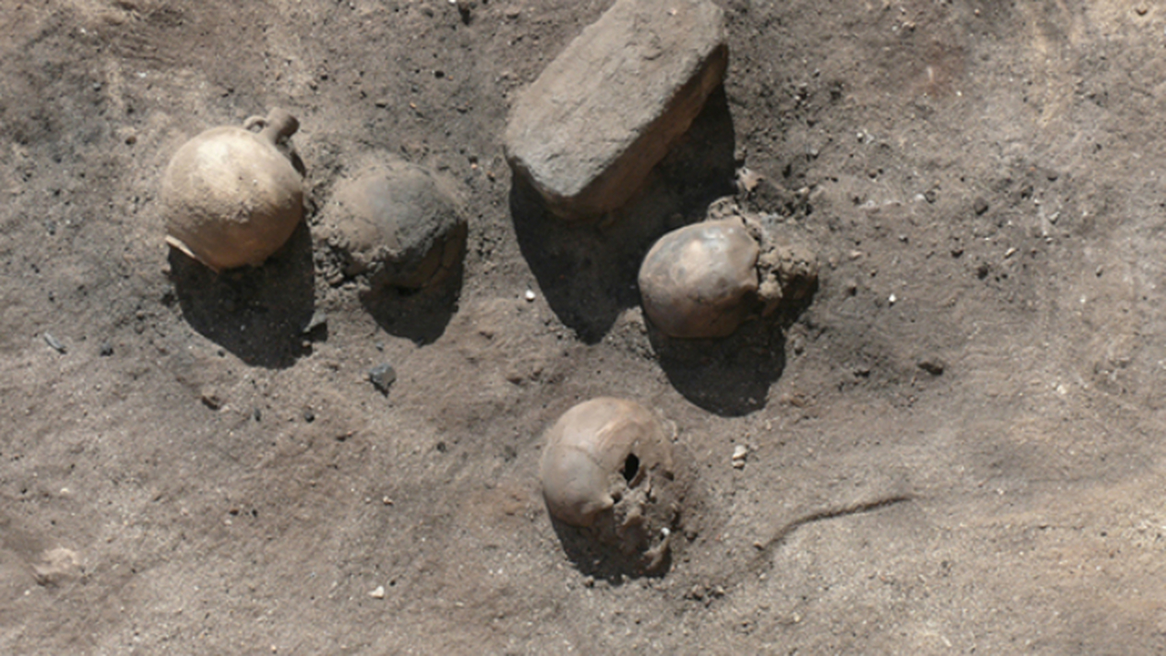 В Египте обнаружены останки жертв ужасающей эпидемии