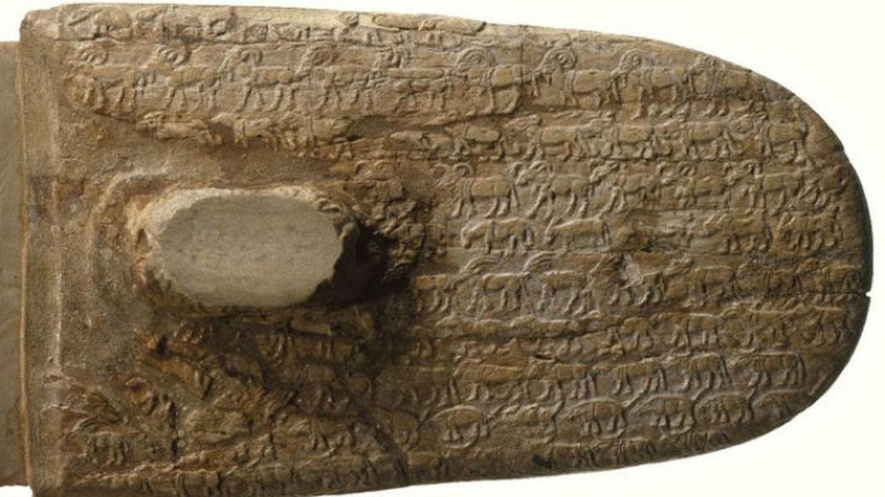 Живопись помогла установить, как вымирали древние животные