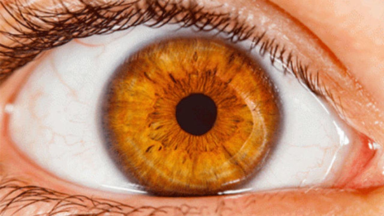 Слепое пятно человеческого глаза можно сократить тренировками