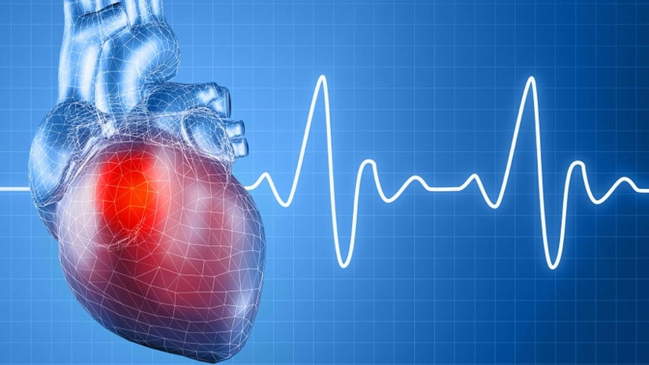 """Новосибирские учёные разработали """"ядовитое"""" лекарство для сердца"""