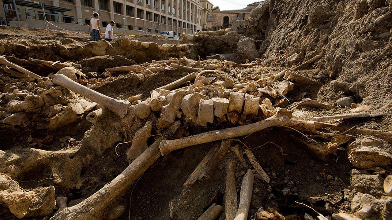Неприятное открытие: Черная смерть пряталась в Европе почти 400 лет