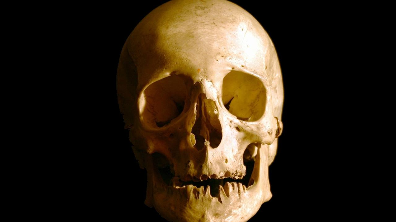 Стволовые клетки помогут восстановить череп и лицо человека после травмы